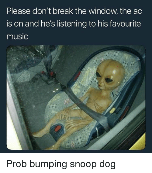 Music, Snoop, and Break: Please don't break the window, the ac  is on and he's listening to his favourite  music Prob bumping snoop dog