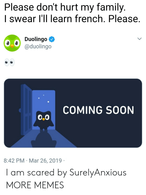 Dank, Family, and Memes: Please don't hurt my family.  I swear l'll learn french. Please.  Duolingo Ф  @duolingo  COMING SOON  0.0  8:42 PM Mar 26, 2019 I am scared by SurelyAnxious MORE MEMES