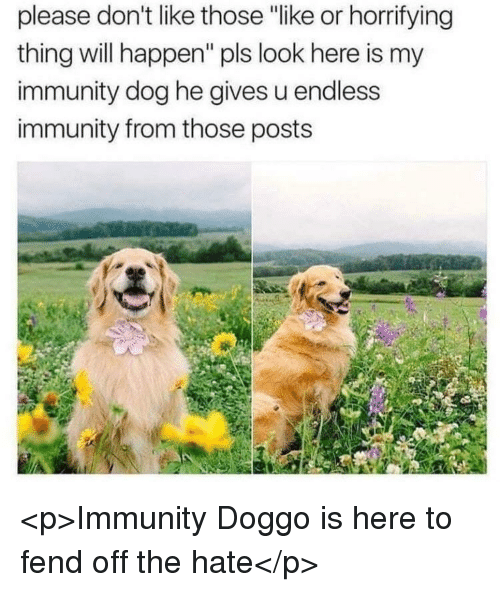 """Doggo, Dog, and Will: please don't like those """"like or horrifying  thing will happen"""" pls look here is my  immunity dog he gives u endless  immunity from those posts <p>Immunity Doggo is here to fend off the hate</p>"""