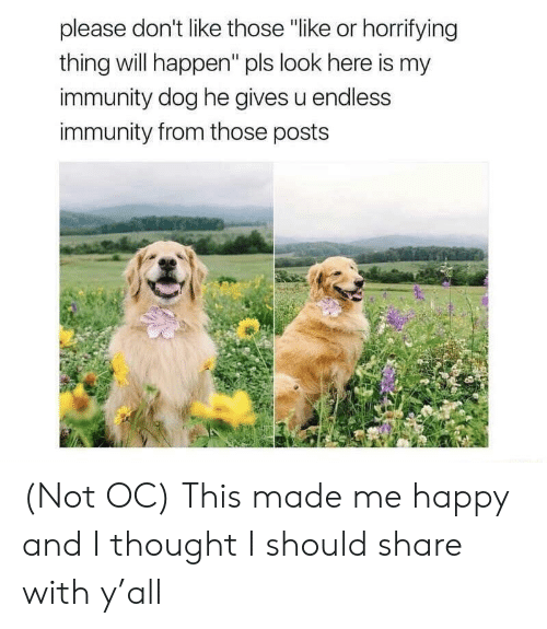 "Happy, Thought, and Dog: please don't like those ""like or horrifying  thing will happen"" pls look here is my  immunity dog he gives u endless  immunity from those posts (Not OC) This made me happy and I thought I should share with y'all"