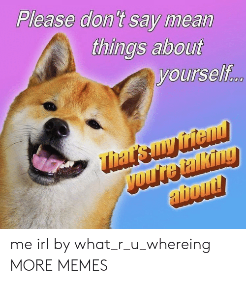 What R: Please don't say mean  things about  yourself me irl by what_r_u_whereing MORE MEMES