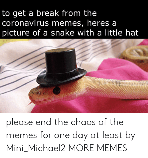 one day: please end the chaos of the memes for one day at least by Mini_Michael2 MORE MEMES