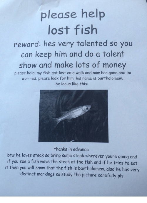 Money, Lost, and Fish: please help  lost fish  reward: hes very talented so you  can keep him and do a talent  show and make lots of money  please help. my fish got lost on a walk and now hes gone and im  worried. please look for him. his name is bartholomew.  he looks like this:  thanks in advance  btw he loves steak so bring some steak wherever youre going and  if you see a fish wave the steak at the fish and if he tries to eat  it then you will know that the fish is bartholomew. also he has very  distinct markings so study the picture carefully pls