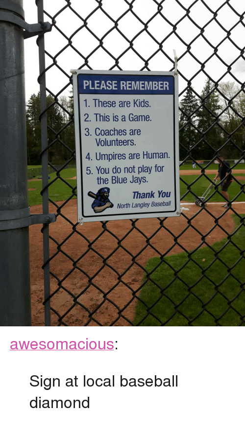 """Jays: PLEASE REMEMBER  1. These are Kids.  2. This is a Game.  3. Coaches are  Volunteers.  4. Umpires are Human.  5. You do not play for  the Blue Jays.  Thank You  North Langley Baseball <p><a href=""""http://awesomacious.tumblr.com/post/173418607565/sign-at-local-baseball-diamond"""" class=""""tumblr_blog"""">awesomacious</a>:</p>  <blockquote><p>Sign at local baseball diamond</p></blockquote>"""
