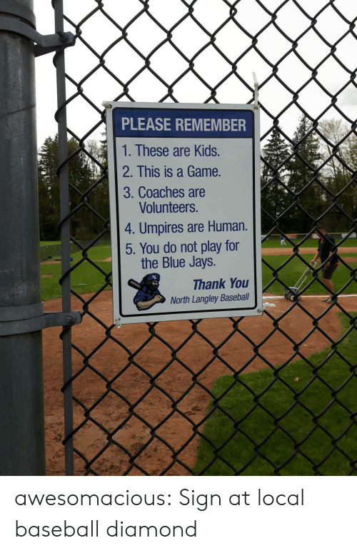 Jays: PLEASE REMEMBER  1. These are Kids.  2. This is a Game.  3. Coaches are  Volunteers.  4. Umpires are Human.  5. You do not play for  the Blue Jays.  Thank You  North Langley Baseball awesomacious:  Sign at local baseball diamond