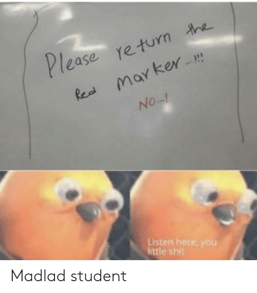 rea: Please return he  Rea marker  NO...!  Listen here, you  little shit Madlad student
