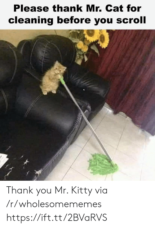 Thank You, Cat, and Via: Please thank Mr. Cat for  cleaning before you scroll Thank you Mr. Kitty via /r/wholesomememes https://ift.tt/2BVaRVS