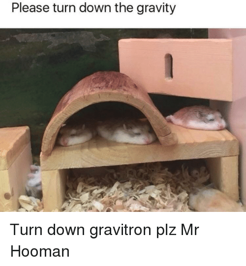 Gravity, Down, and Please: Please turn down the gravity Turn down gravitron plz Mr Hooman