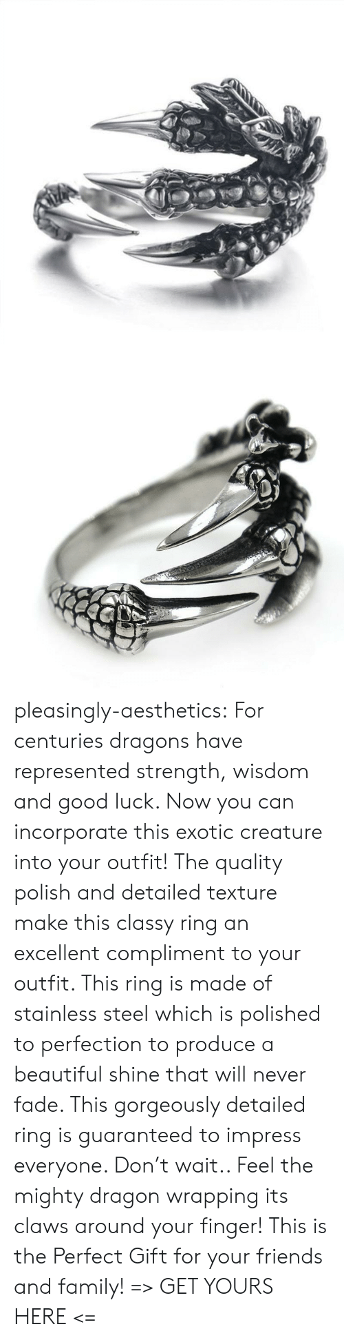 Beautiful, Family, and Friends: pleasingly-aesthetics: For centuries dragons have represented strength, wisdom and good luck. Now you can incorporate this exotic creature into your outfit! The quality polish and detailed texture make this classy ring an excellent compliment to your outfit. This ring is made of stainless steel which is polished to perfection to produce a beautiful shine that will never fade.  This gorgeously detailed ring is guaranteed to impress everyone. Don't wait.. Feel the mighty dragon wrapping its claws around your finger! This is the Perfect Gift for your friends and family! => GET YOURS HERE <=