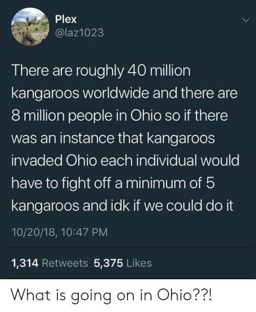 Ohio, Plex, and What Is: Plex  @laz1023  There are roughly 40 million  kangaroos worldwide and there are  8 million people in Ohio so if there  was an instance that kangaroos  invaded Ohio each individual would  have to fight off a minimum of 5  kangaroos and idk if we could do it  10/20/18, 10:47 PM  1,314 Retweets 5,375 Likes What is going on in Ohio??!