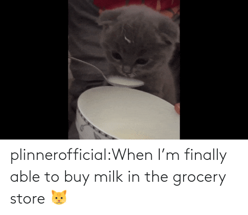 When Im: plinnerofficial:When I'm finally able to buy milk in the grocery store 🐱