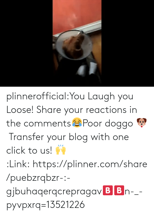 reactions: plinnerofficial:You Laugh you Loose! Share your reactions in the comments😂Poor doggo 🐶 Transfer your blog with one click to us! 🙌 :Link: https://plinner.com/share/puebzrqbzr-:-gjbuhaqerqcrepragav🅱🅱n-_-pyvpxrq=13521226