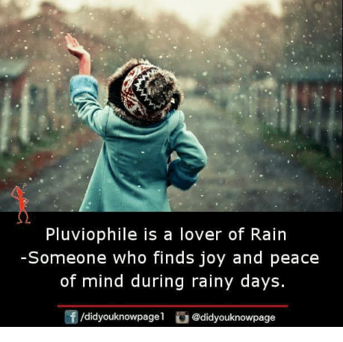 Memes, Rain, and Mind: Pluviophile is a lover of Rain  Someone who finds joy and peace  of mind during rainy days  f/didyouknowpagel @didyouknowpage