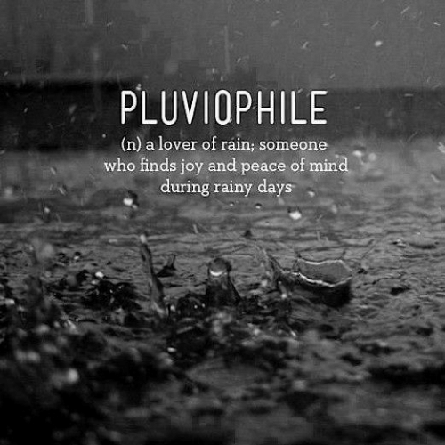 rainy: PLUVIOPHILE  (n) a lover of ráin; someone  who finds joy and peace of mind  during rainy days