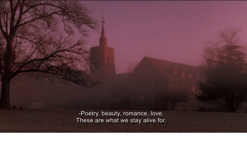 Alive, Love, and Poetry: -Poetry, beauty, romance, love.  These are what we stay alive for.