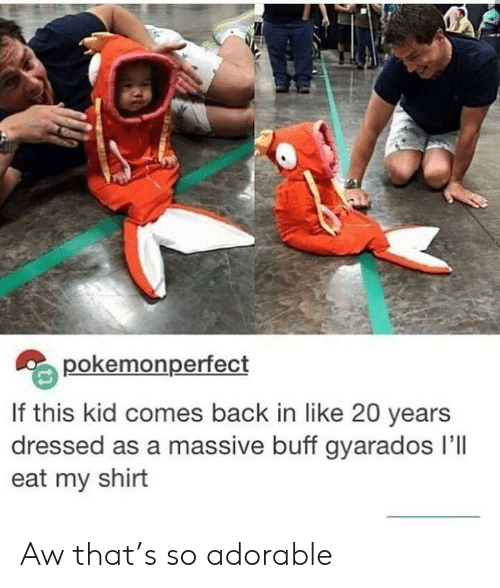 Adorable, Back, and Kid: pokemonperfect  If this kid comes back in like 20 years  dressed as a massive buff gyarados Ill  eat my shirt Aw that's so adorable