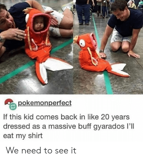 Back, Kid, and Shirt: pokemonperfect  If this kid comes back in like 20 years  dressed as a massive buff gyarados I'll  eat my shirt We need to see it