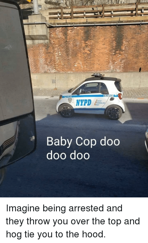 doo doo: POLICE  46 PT) 2742  Baby Cop doo  doo doo Imagine being arrested and they throw you over the top and hog tie you to the hood.