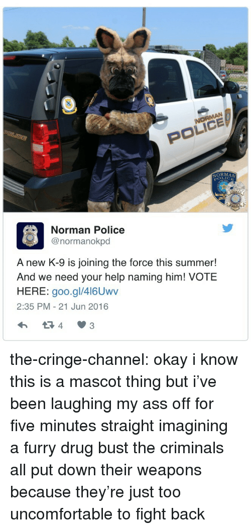 Ass, Police, and Target: POLICE  NORMA  OLICE  Norman Police  @normanokpd  A new K-9 is joining the force this summer!  And we need your help naming him! VOTE  HERE: goo.gl/416Uwv  2:35 PM-21 Jun 2016  4 3 the-cringe-channel:  okay i know this is a mascot thing but i've been laughing my ass off for five minutes straight imagining a furry drug bust the criminals all put down their weapons because they're just too uncomfortable to fight back