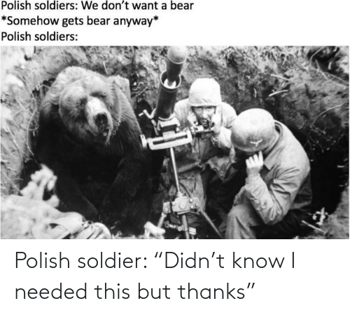 "polish: Polish soldier: ""Didn't know I needed this but thanks"""