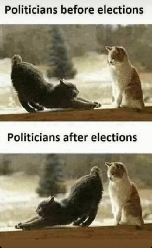 Memes, Politicians, and 🤖: Politicians before elections  Politicians after elections