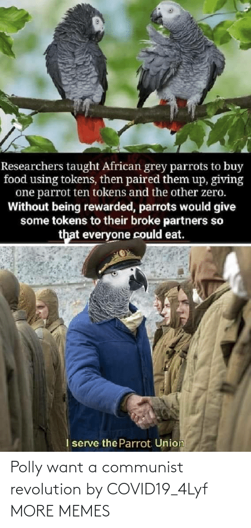 Communist: Polly want a communist revolution by COVID19_4Lyf MORE MEMES