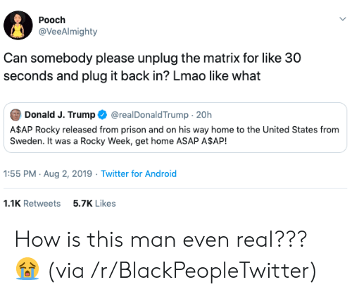 A$AP Rocky, Android, and Blackpeopletwitter: Pooch  @VeeAlmighty  Can somebody please unplug the matrix for like 30  seconds and plug it back in? Lmao like what  Donald J. Trump  @realDonaldTrump 20h  A$AP Rocky released from prison and on his way home to the United States from  Sweden. It was a Rocky Week, get home ASAP A$AP!  1:55 PM Aug 2, 2019 Twitter for Android  1.1K Retweets  5.7K Likes How is this man even real??? 😭 (via /r/BlackPeopleTwitter)