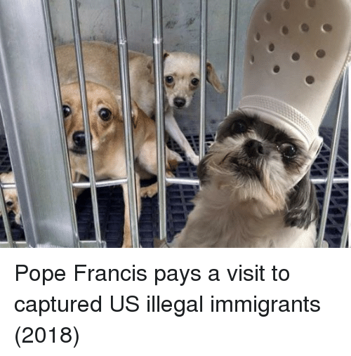 Illegal Immigrants: Pope Francis pays a visit to captured US illegal immigrants (2018)
