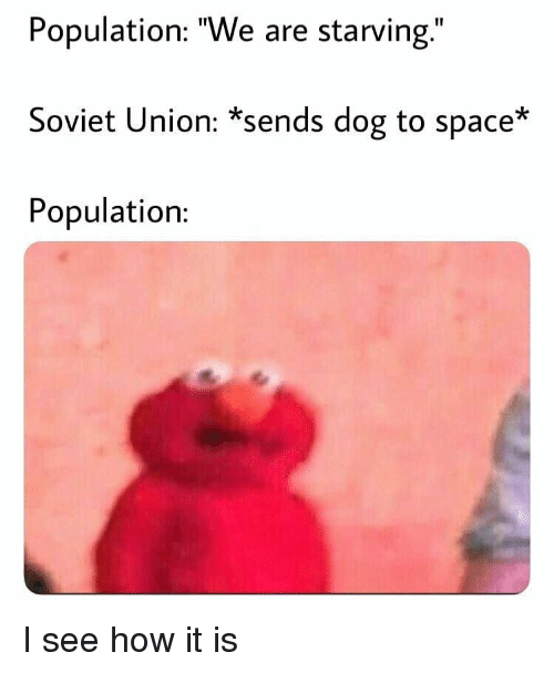 "Memes, Space, and Soviet: Population: ""We are starving.""  Soviet Union: *sends dog to space*  Population: I see how it is"