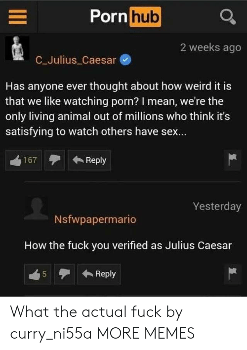 How The Fuck: Porn hub  2 weeks ago  C_Julius Caesar  Has anyone ever thought about how weird it is  that we like watching porn? I mean, we're the  only living animal out of millions who think it's  satisfying to watch others have sex...  Reply  167  Yesterday  Nsfwpapermario  How the fuck you verified as Julius Caesar  Reply  5  LO What the actual fuck by curry_ni55a MORE MEMES