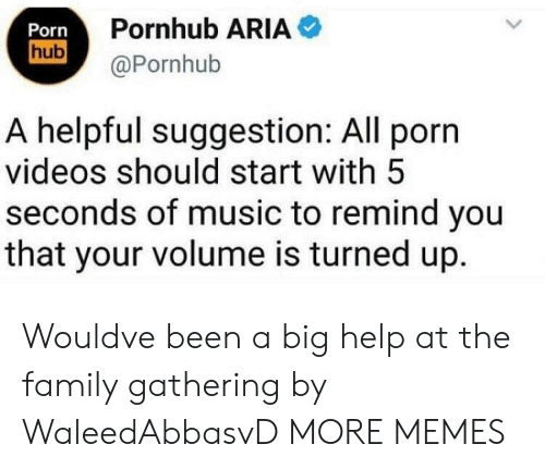 Pornhub Aria: Porn  hub  Pornhub ARIA  @Pornhub  A helpful suggestion: All porn  videos should start with 5  seconds of music to remind you  that your volume is turned up. Wouldve been a big help at the family gathering by WaleedAbbasvD MORE MEMES