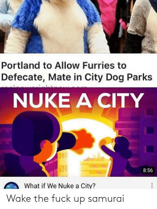 mate: Portland to Allow Furries to  Defecate, Mate in City Dog Parks  NUKE A CITY  8:56  What if We Nuke a City? Wake the fuck up samurai