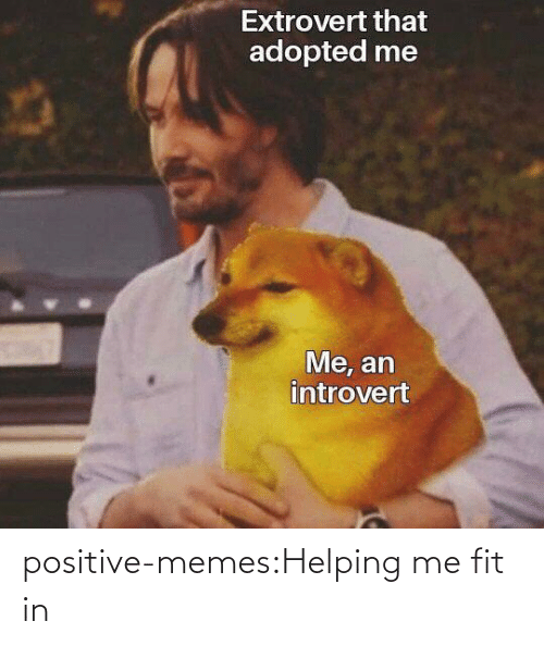 fit: positive-memes:Helping me fit in