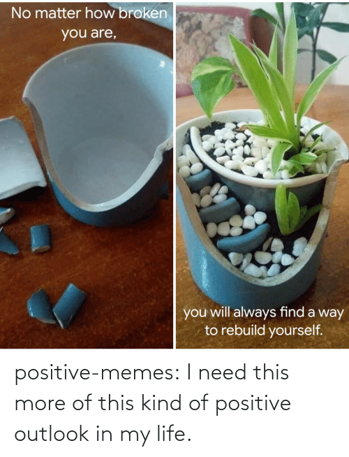 my life: positive-memes:  I need this more of this kind of positive outlook in my life.