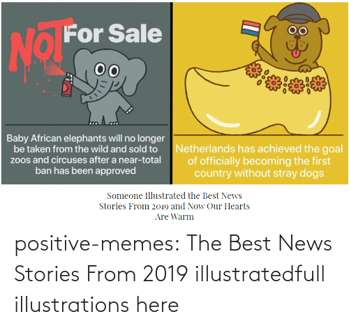 warm: positive-memes:    The Best News Stories From 2019 illustratedfull illustrations here