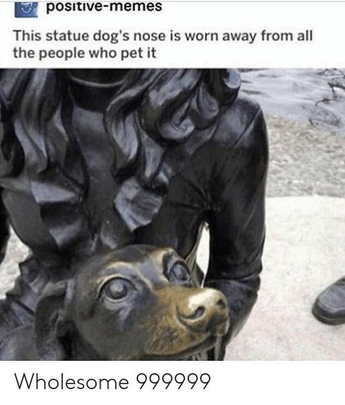 Dogs, Memes, and Wholesome: positive-memes  This statue dog's nose is worn away from all  the people who pet it Wholesome 999999