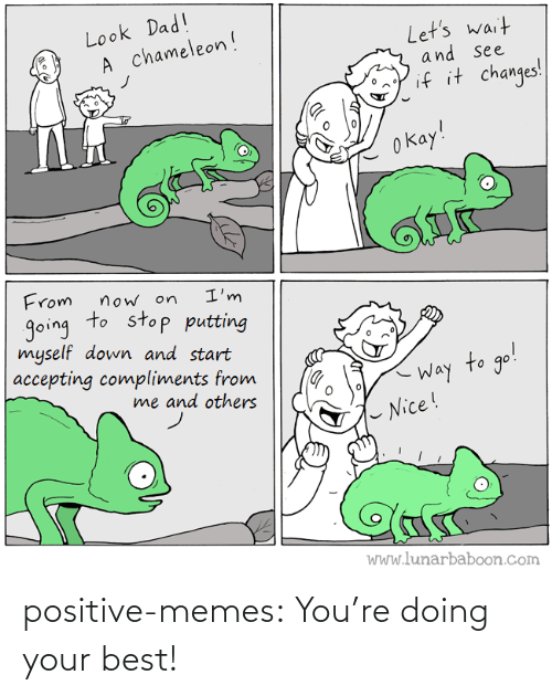 Doing: positive-memes:  You're doing your best!