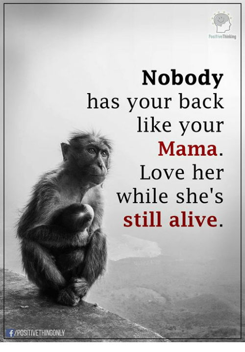 Alive, Love, and Memes: PositiveThinking  Nobody  has your back  like your  Mama  Love her  while she's  still alive  f /POSITIVETHINGONLY