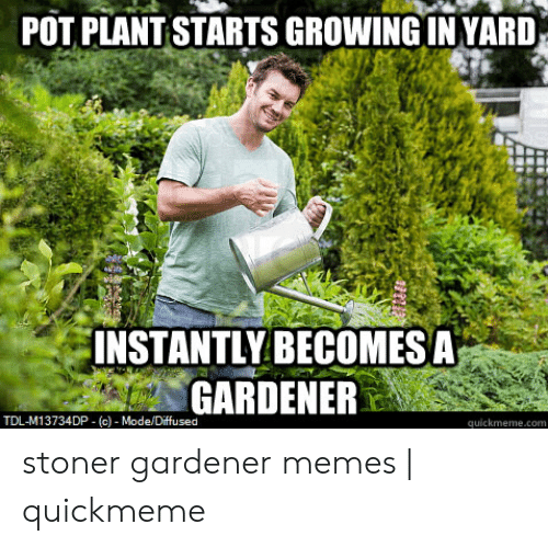 🐣 25+ Best Memes About Funny Gardening