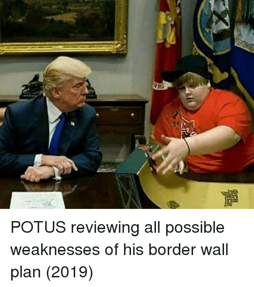 Potus, All, and Possible: POTUS reviewing all possible weaknesses of his border wall plan (2019)