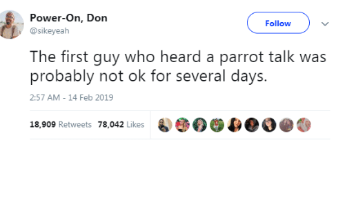 Power, Who, and Parrot: Power-On, Don  @sikeyeah  Followv  The first guy who heard a parrot talk was  probably not ok for several days.  2:57 AM-14 Feb 2019  18,909 Retweets 78 042 likesOO