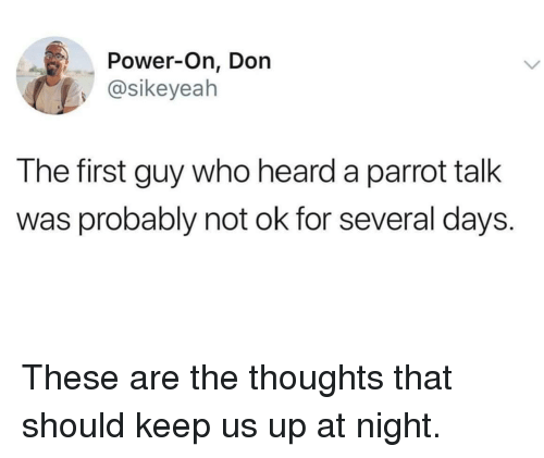 Power, Who, and Parrot: Power-On, Don  @sikeyeah  The first guy who heard a parrot talk  was probably not ok for several days. These are the thoughts that should keep us up at night.