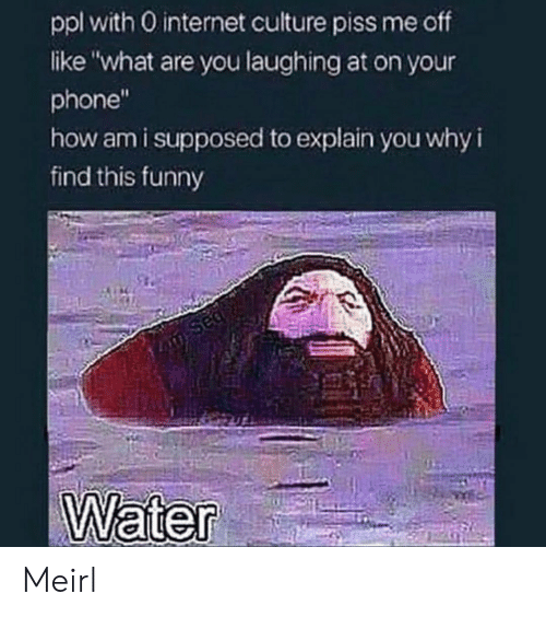 "Funny, Internet, and Phone: ppl with 0 internet culture piss me off  like ""what are you laughing at on your  phone""  how am i supposed to explain you why i  find this funny  Sed  Water Meirl"