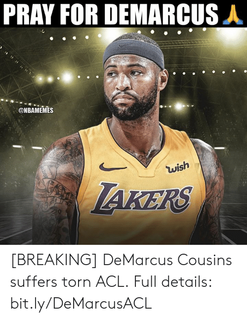 DeMarcus Cousins: PRAY FOR DEMARCUS A  @NBAMEMES  wish  AKERS [BREAKING] DeMarcus Cousins suffers torn ACL.  Full details: bit.ly/DeMarcusACL