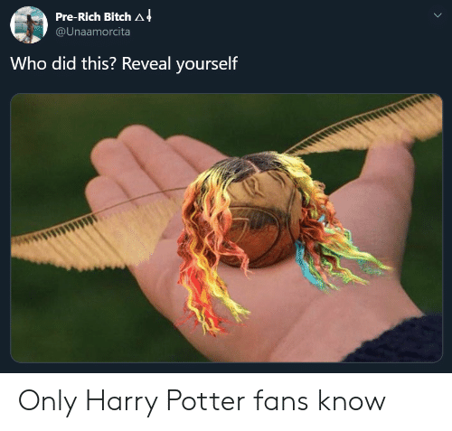 Who Did This: Pre-Rich Bitch A 4  @Unaamorcita  Who did this? Reveal yourself Only Harry Potter fans know
