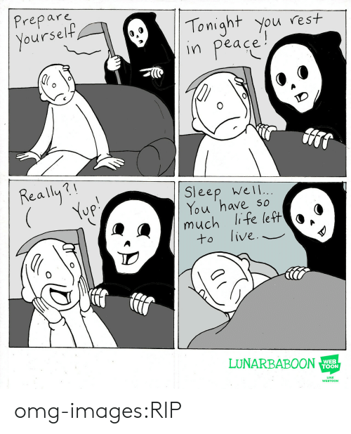tonight you: Prepare  oursel  Tonight you rest  in peace  Really?  Sleep wel  You 'have so  much life left o *  to live._  LUNARBABOON  WEB  TOON  LINE  WEBTOON omg-images:RIP