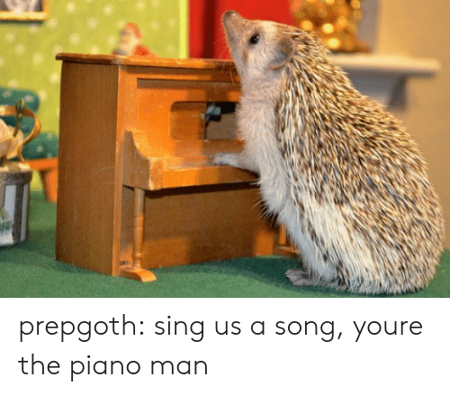 piano man: prepgoth:  sing us a song, youre the piano man