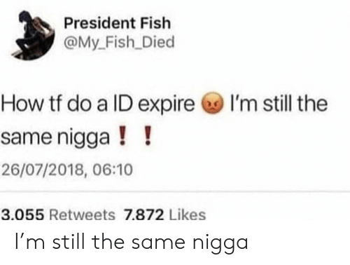 Fish, How, and President: President Fish  @My_Fish Died  I'm still the  How tf do a ID expire  same nigga!!  26/07/2018, 06:10  3.055 Retweets 7.872 Likes I'm still the same nigga