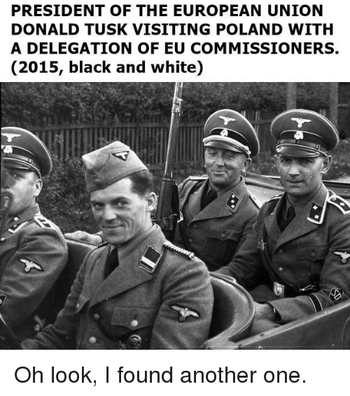 donald tusk: PRESIDENT OF THE EUROPEAN UNION  DONALD TUSK VISITING POLAND WITH  A DELEGATION OF EU COMMISSIONERS,  (2015, black and white) Oh look, I found another one.