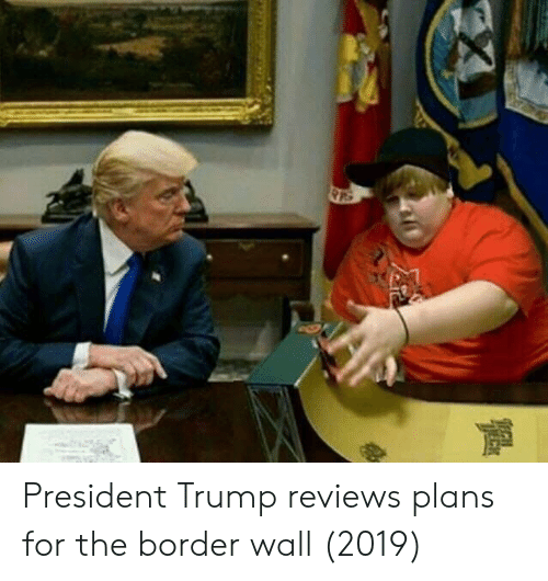 Trump, Reviews, and President: President Trump reviews plans for the border wall (2019)